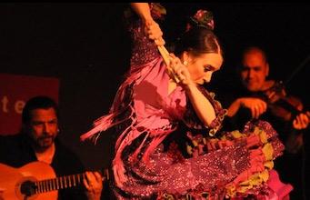 A Palo Seco Flamenco