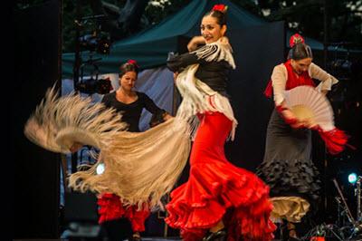 Flamenco y Sol